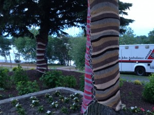 Susan's kinda festival...the director is a knitter and knit-bombed the festival grounds!